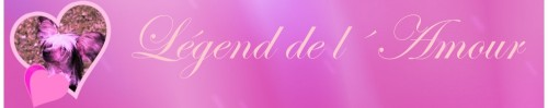 Banner Legend del amour